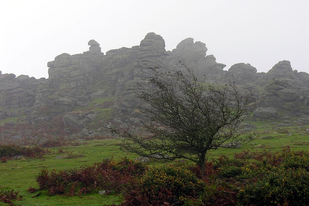 1024px-Dartmoor_Hound_Tor