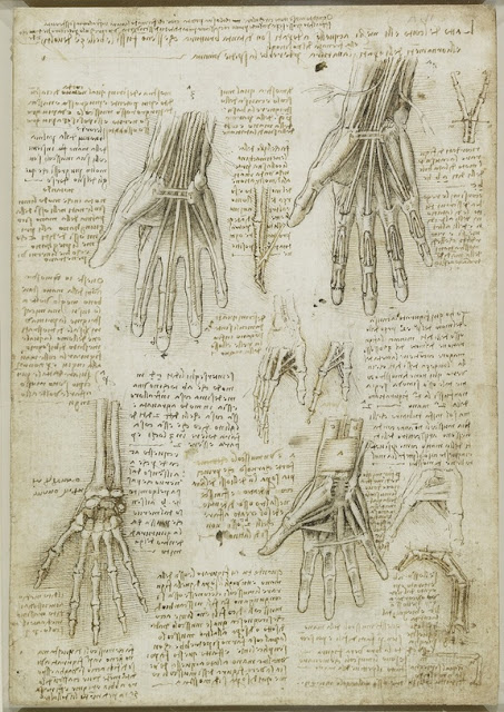 leonardo hand-120508