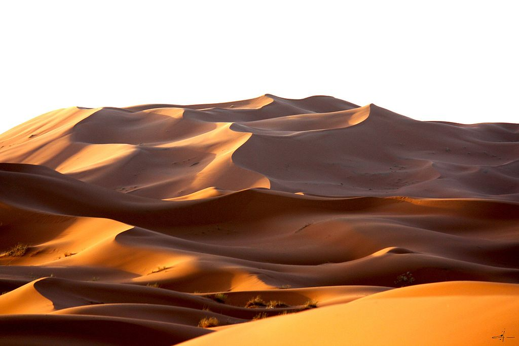 Morning_Moroccan_Desert_dune (1)