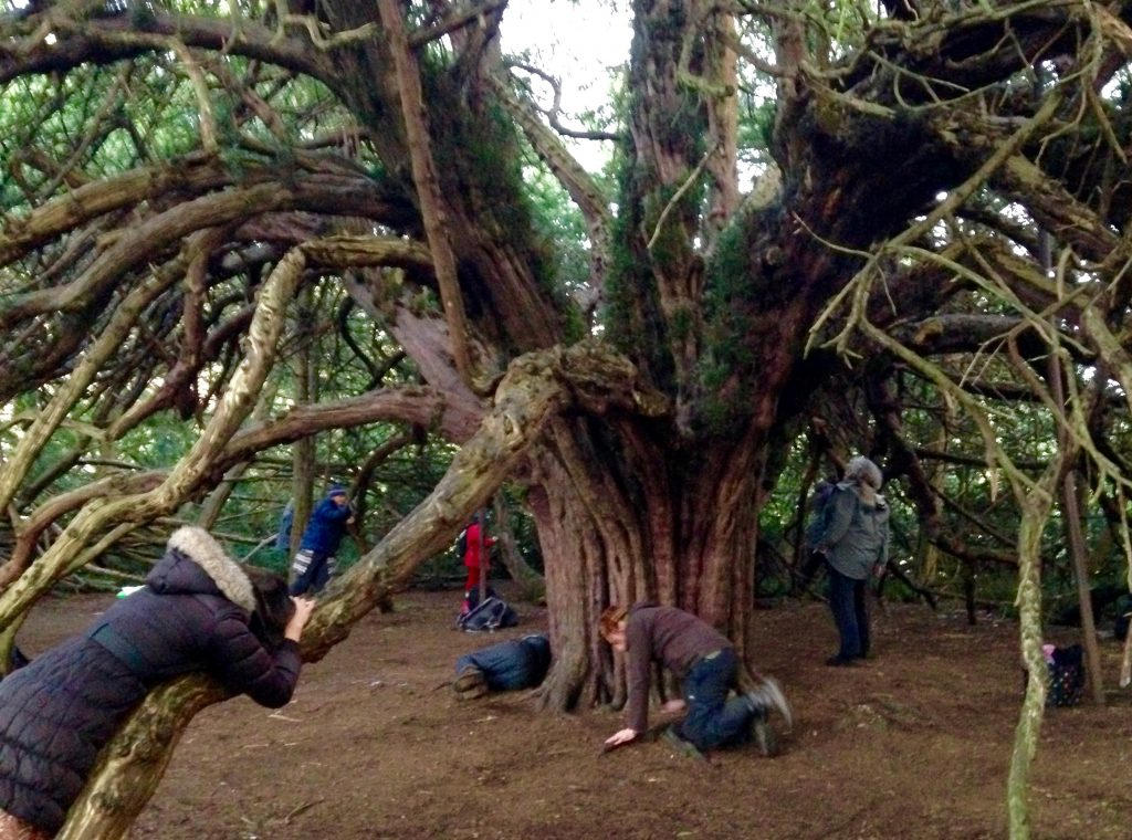 Yew Tree communication workshop with Michael Dunning, 2016