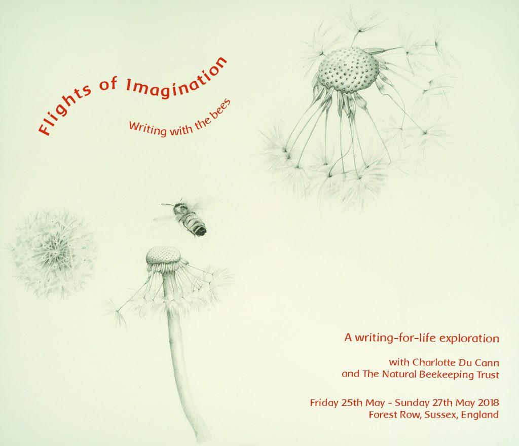 Flights of Imagination flyer final