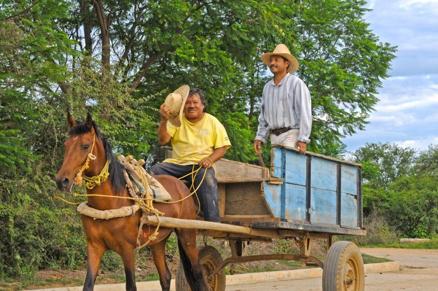 Oaxaca (Zegache) - day 18 035