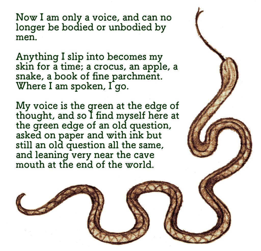 The Snake in the Margins - Dark Mountain